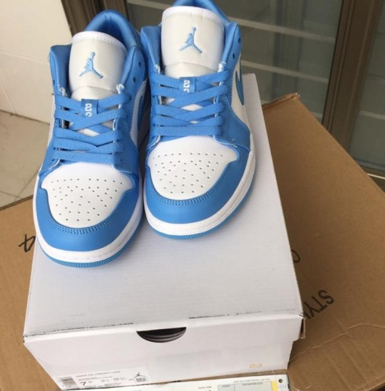 Nike Dunk Light Blue