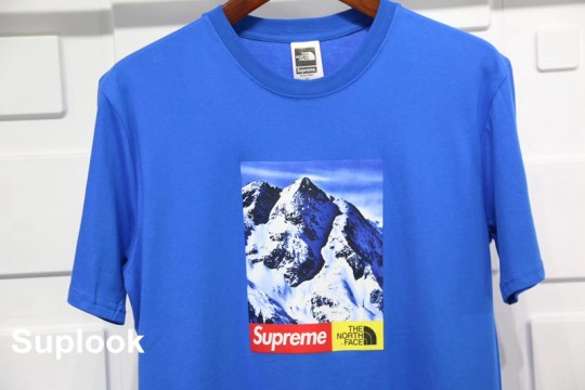(WU$100 pls contact whatsapp +8618559333945 to check size) Supreme The North Face Mountain Tee Blue